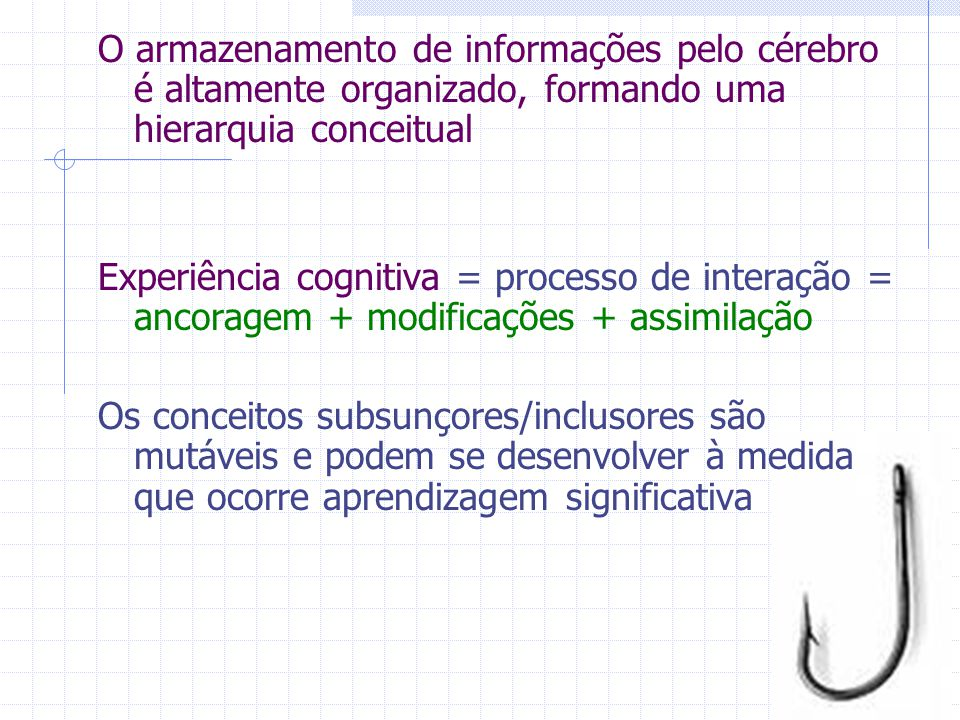 O armazenamento de informações pelo cérebro é altamente organizado, formando uma hierarquia conceitual