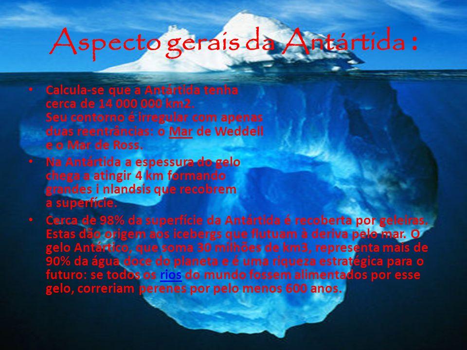 Aspecto gerais da Antártida :
