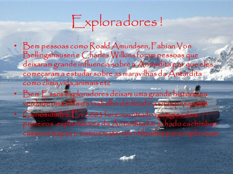 Exploradores !