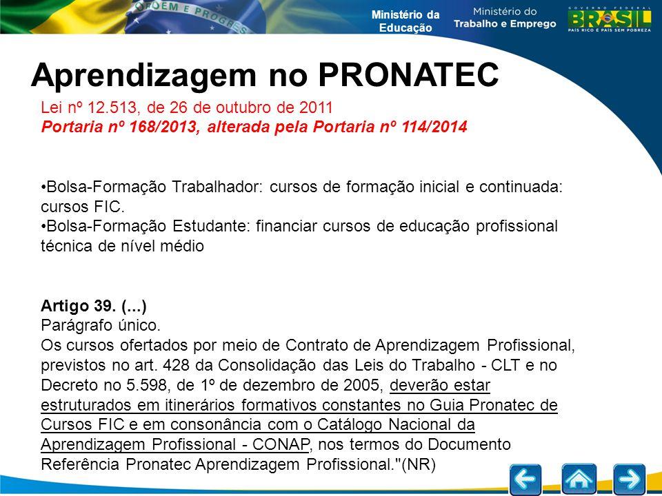 Ministério da Educação Aprendizagem no PRONATEC