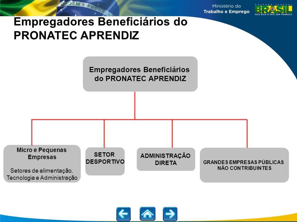 Empregadores Beneficiários GRANDES EMPRESAS PÚBLICAS
