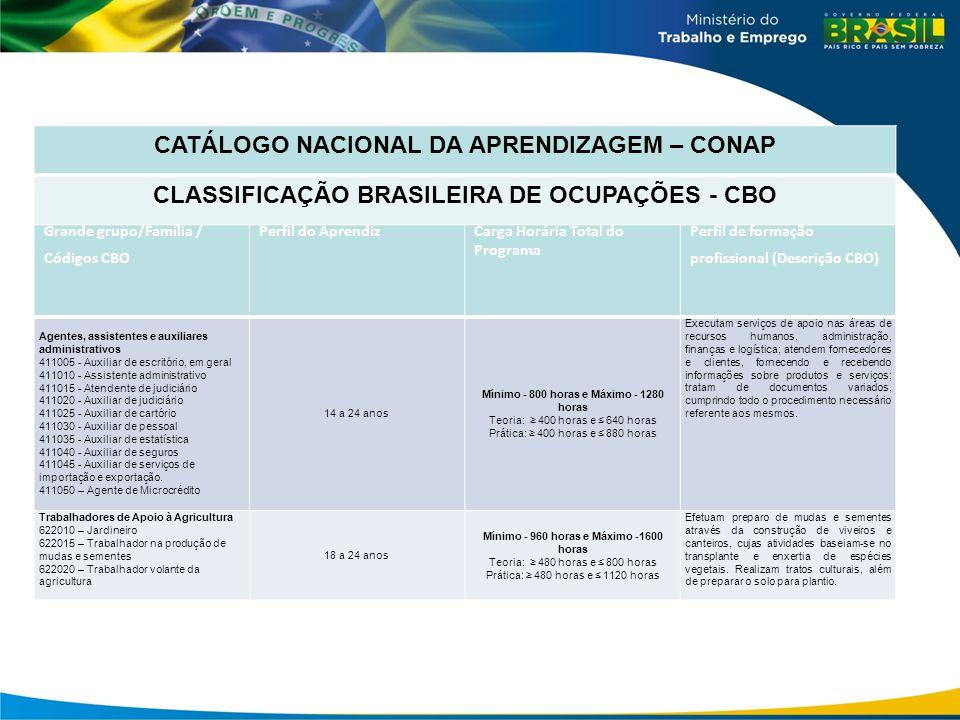 CATÁLOGO NACIONAL DA APRENDIZAGEM – CONAP