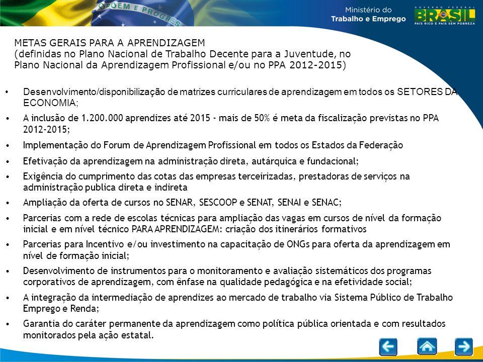 METAS GERAIS PARA A APRENDIZAGEM (definidas no Plano Nacional de Trabalho Decente para a Juventude, no Plano Nacional da Aprendizagem Profissional e/ou no PPA 2012-2015)