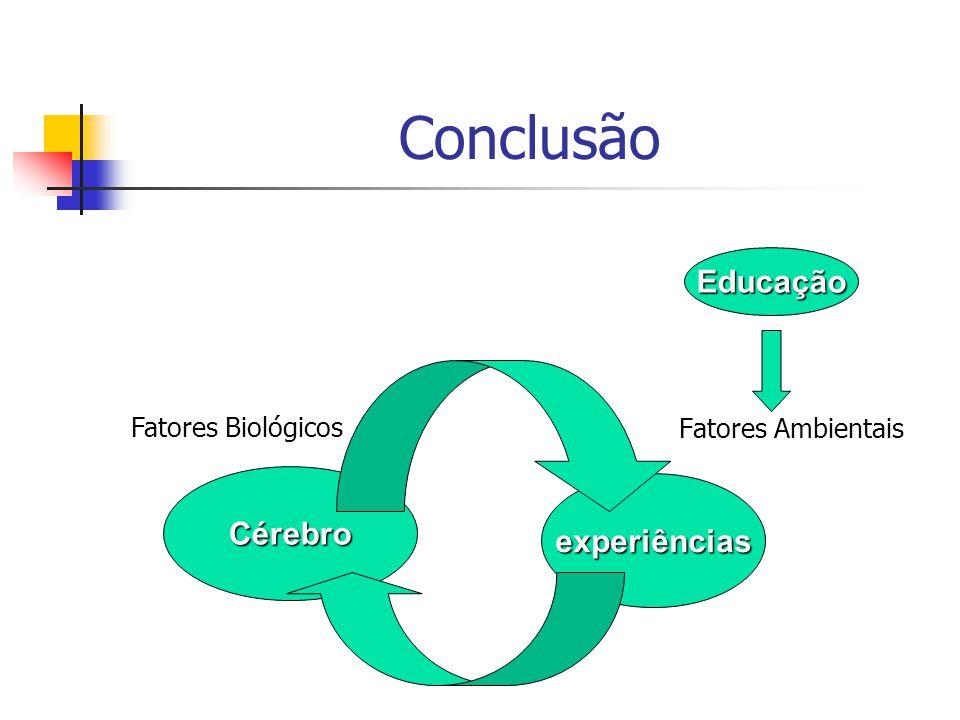 Conclusão Educação Cérebro experiências Fatores Biológicos