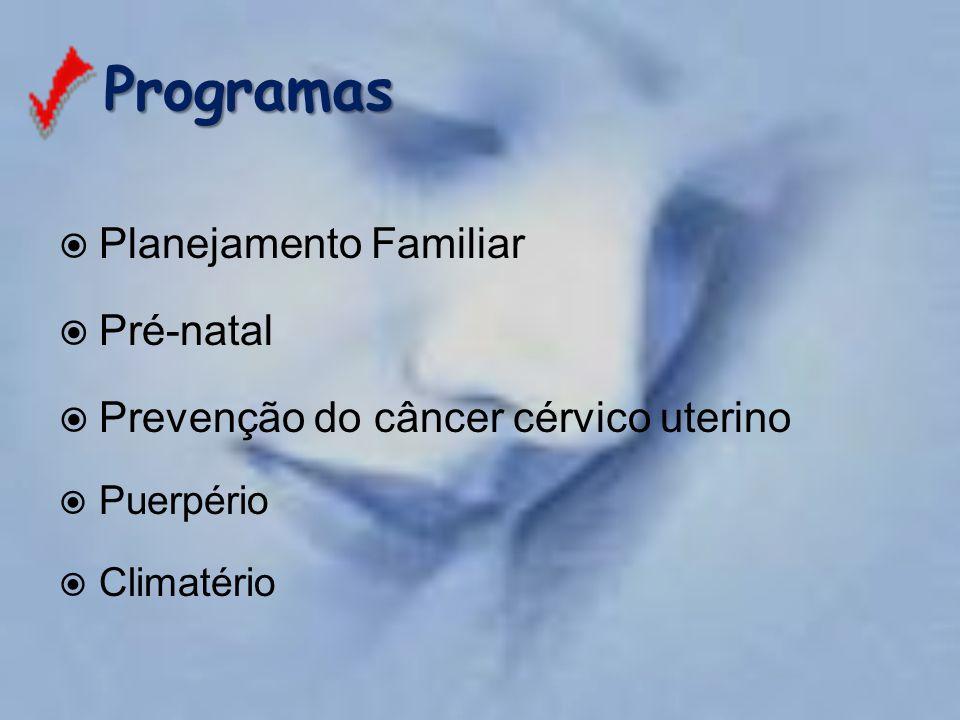 Programas Planejamento Familiar Pré-natal