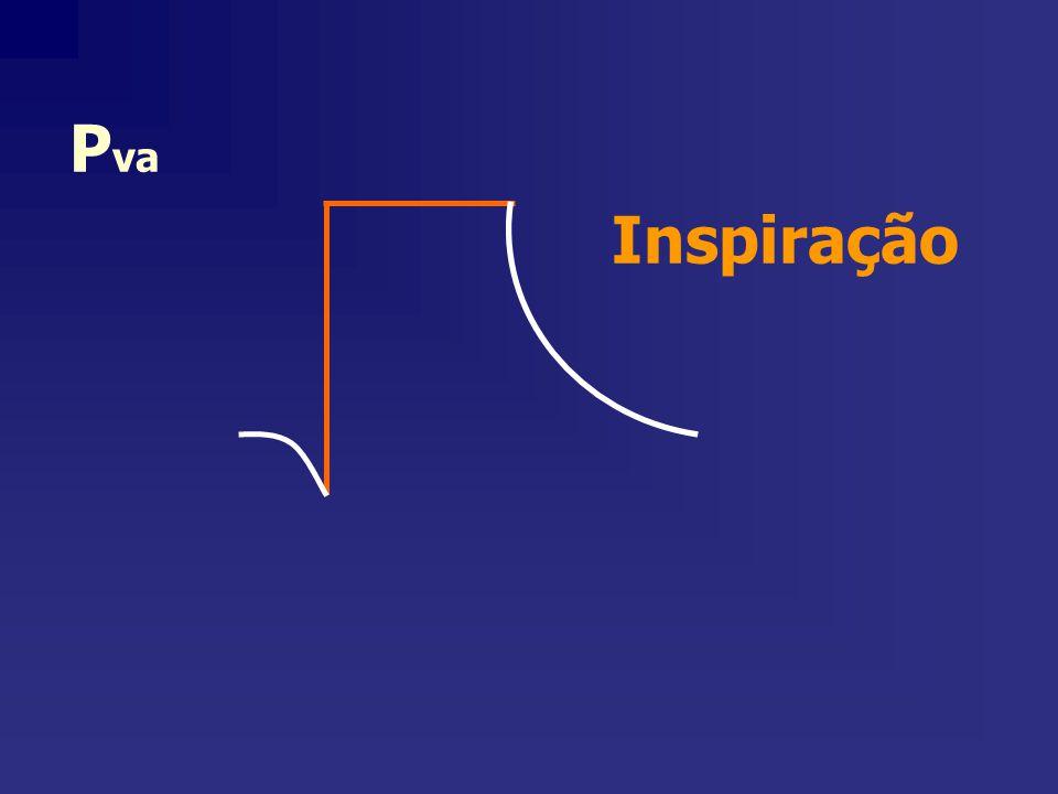 Inspiração Pva