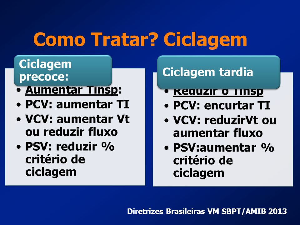 Diretrizes Brasileiras VM SBPT/AMIB 2013