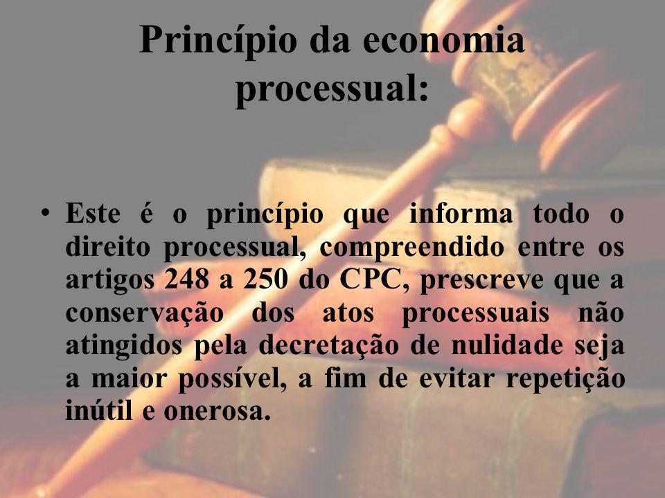 Princípio da economia processual: