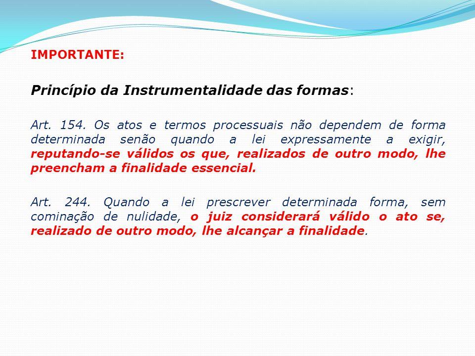 Princípio da Instrumentalidade das formas: