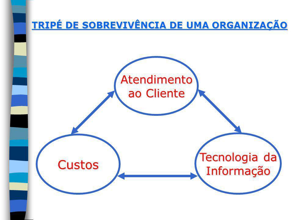 Custos Atendimento ao Cliente Tecnologia da Informação