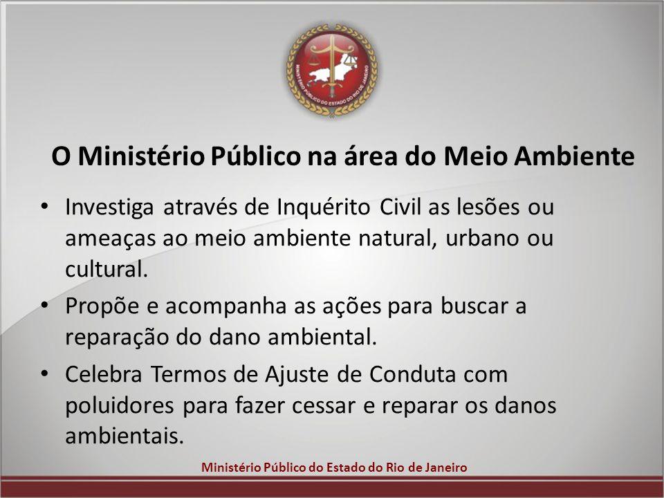O Ministério Público na área do Meio Ambiente
