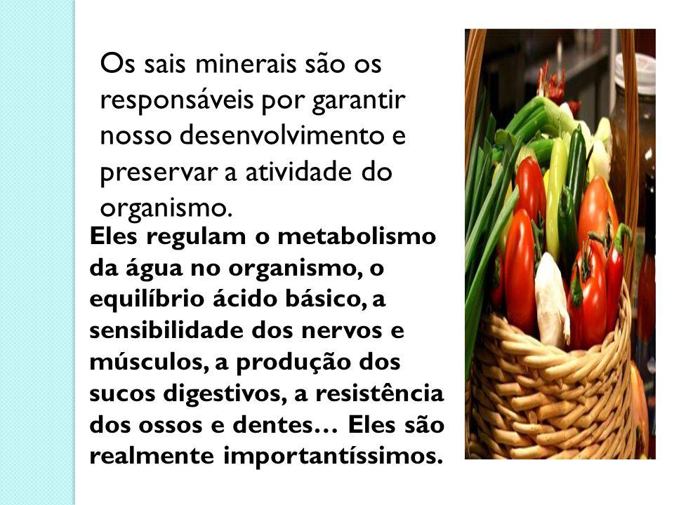Os sais minerais são os responsáveis por garantir nosso desenvolvimento e preservar a atividade do organismo.