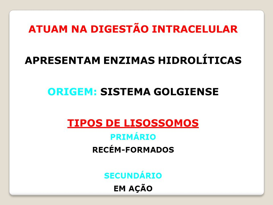 ATUAM NA DIGESTÃO INTRACELULAR