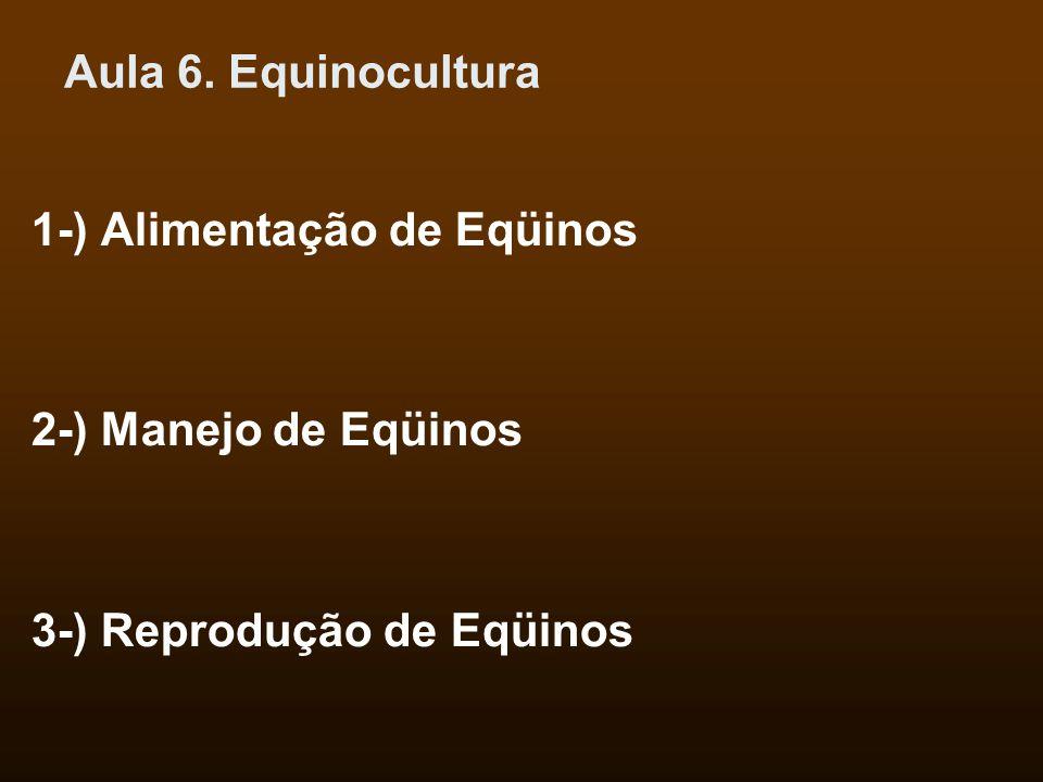 Aula 6. Equinocultura 1-) Alimentação de Eqüinos 2-) Manejo de Eqüinos 3-) Reprodução de Eqüinos