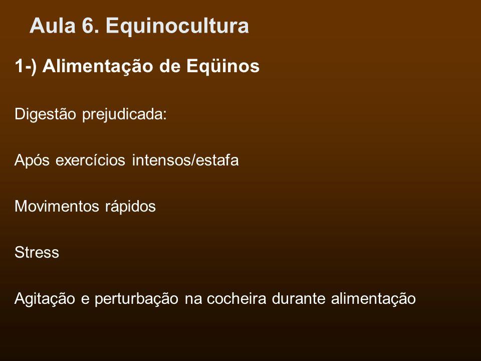 Aula 6. Equinocultura 1-) Alimentação de Eqüinos Digestão prejudicada: