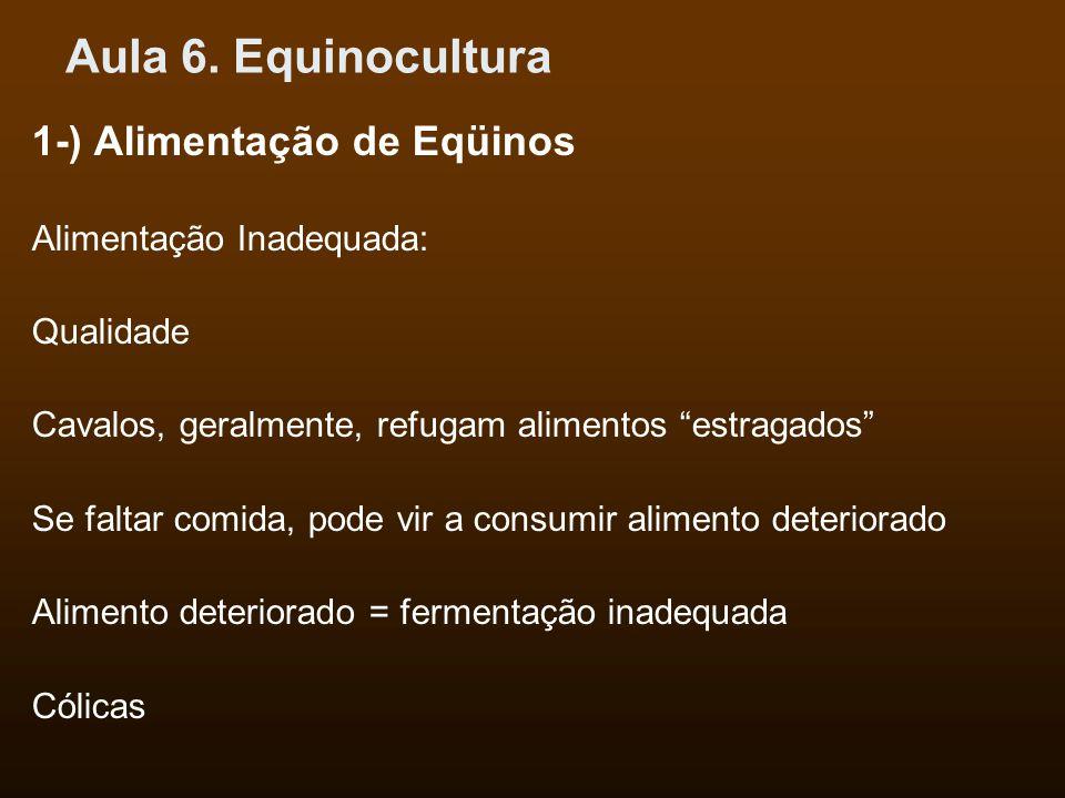 Aula 6. Equinocultura 1-) Alimentação de Eqüinos