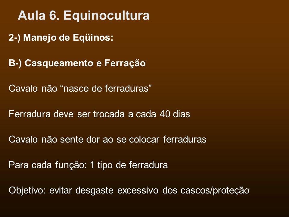 Aula 6. Equinocultura 2-) Manejo de Eqüinos: