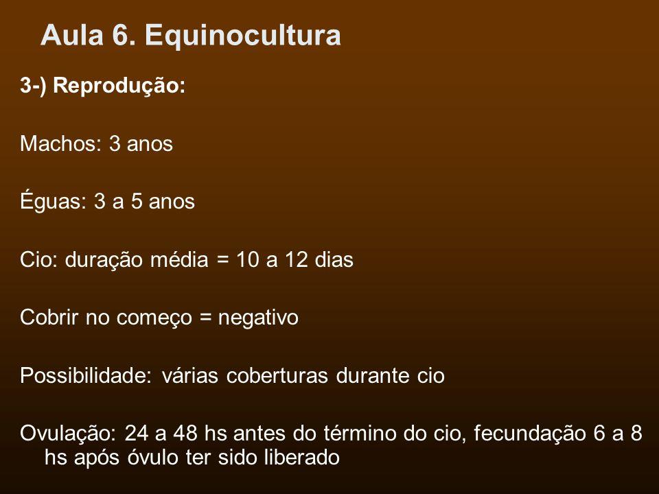 Aula 6. Equinocultura 3-) Reprodução: Machos: 3 anos Éguas: 3 a 5 anos