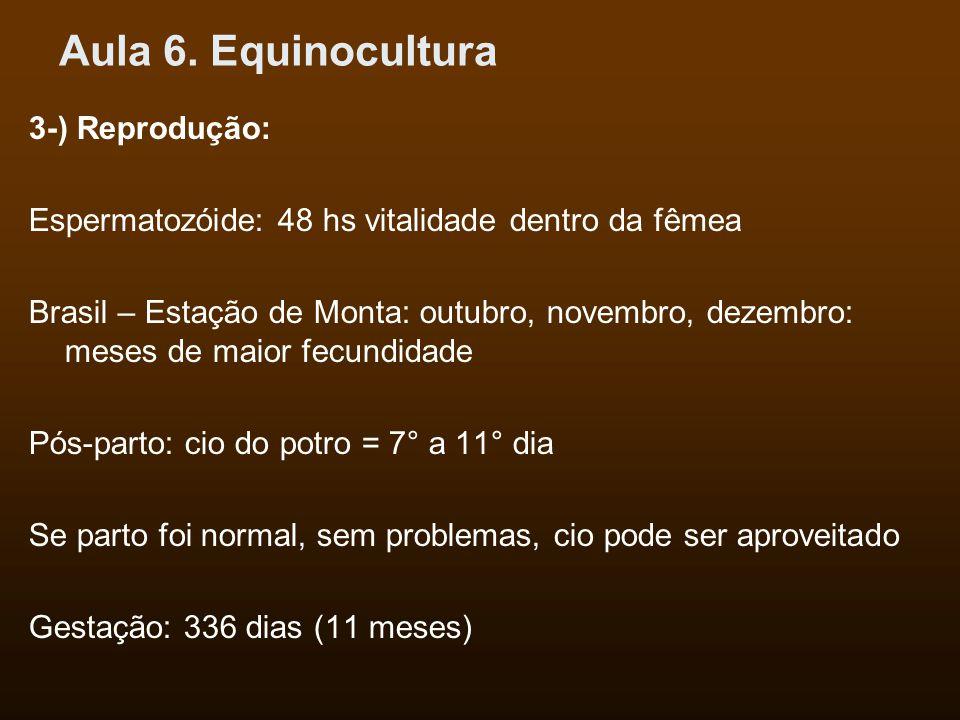 Aula 6. Equinocultura 3-) Reprodução: