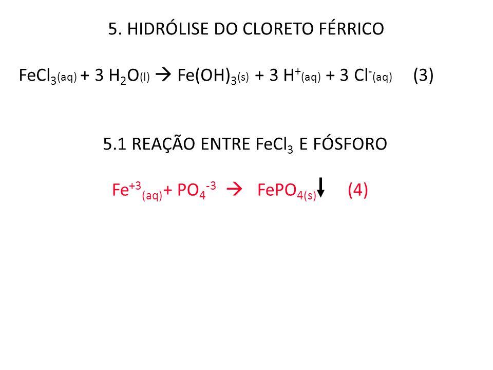 5. HIDRÓLISE DO CLORETO FÉRRICO