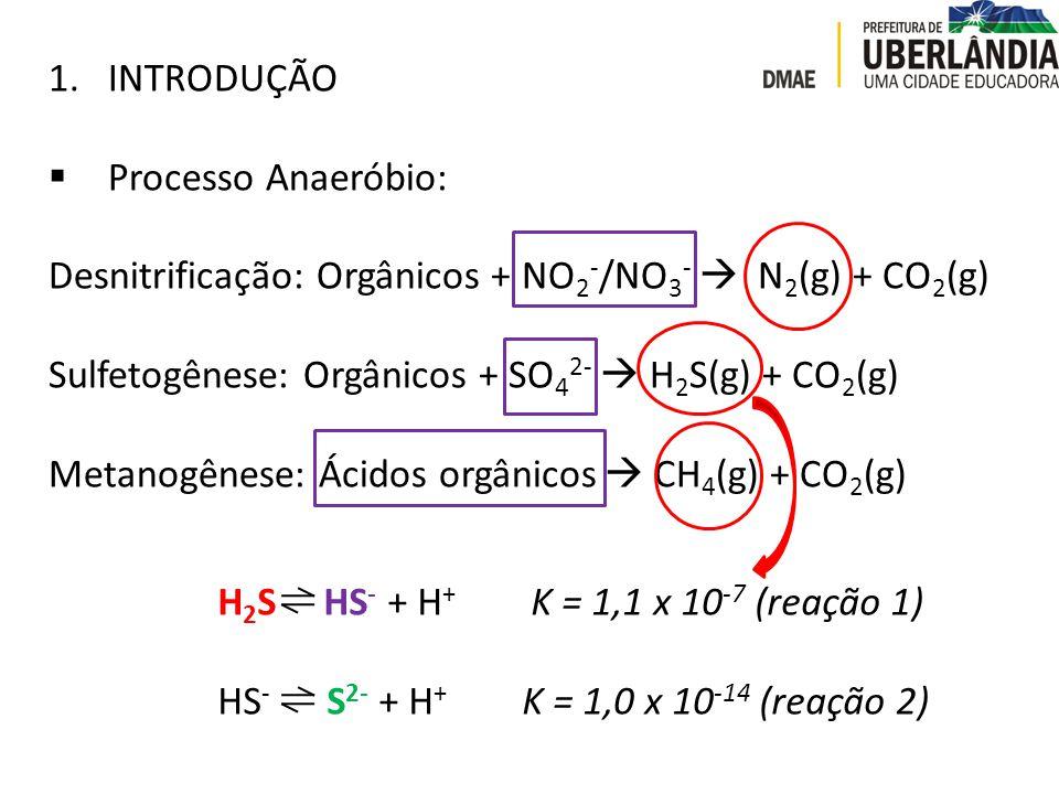 INTRODUÇÃO Processo Anaeróbio: Desnitrificação: Orgânicos + NO2-/NO3-  N2(g) + CO2(g) Sulfetogênese: Orgânicos + SO42-  H2S(g) + CO2(g)