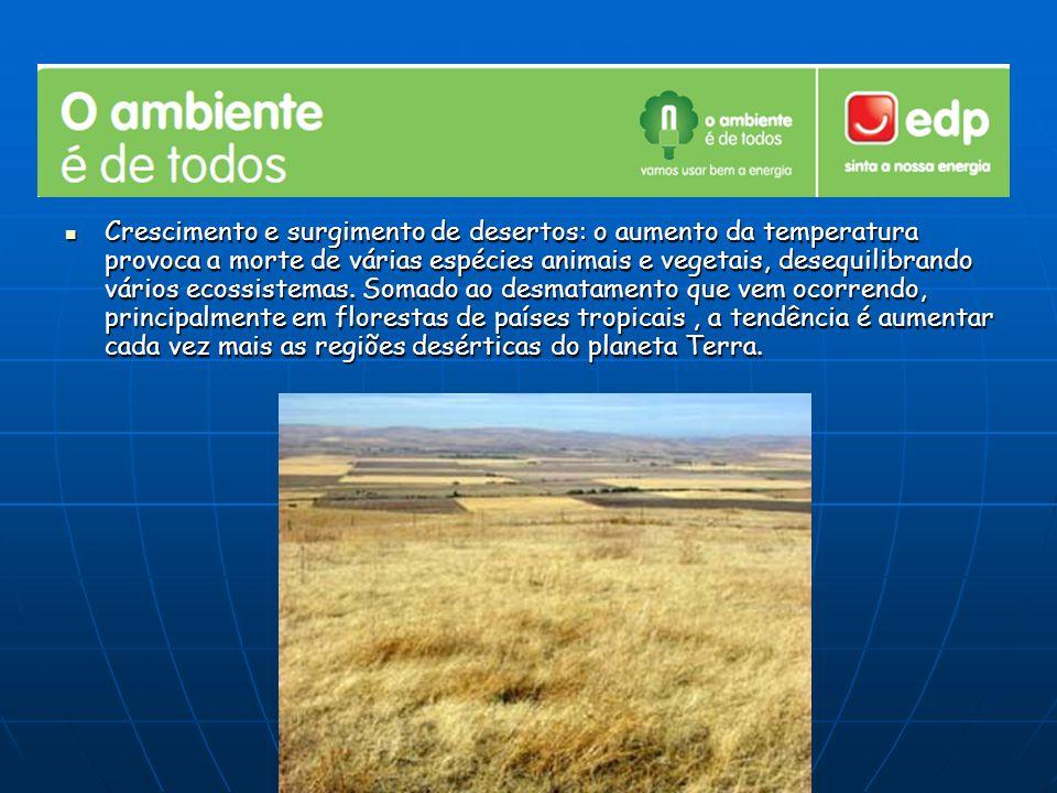 Crescimento e surgimento de desertos: o aumento da temperatura provoca a morte de várias espécies animais e vegetais, desequilibrando vários ecossistemas.