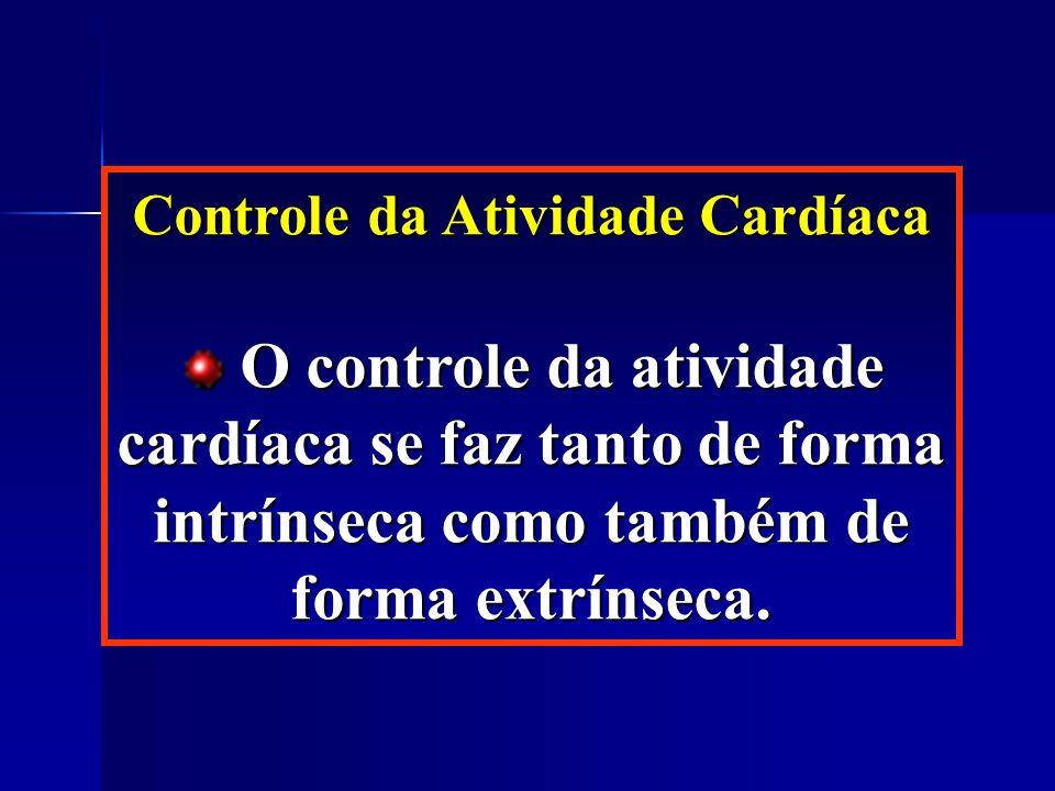 Controle da Atividade Cardíaca