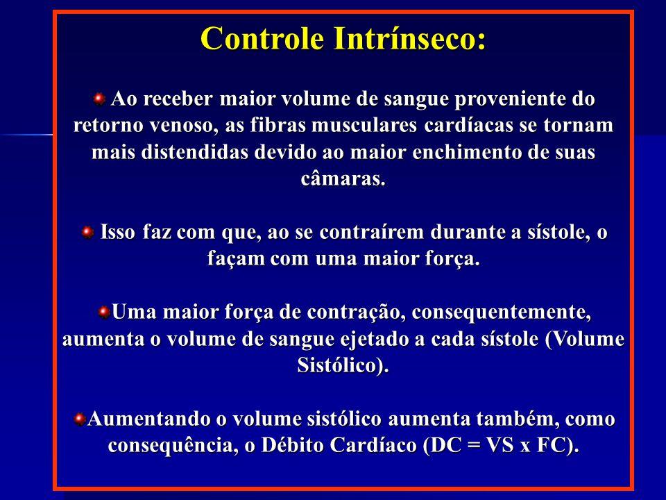 Controle Intrínseco: