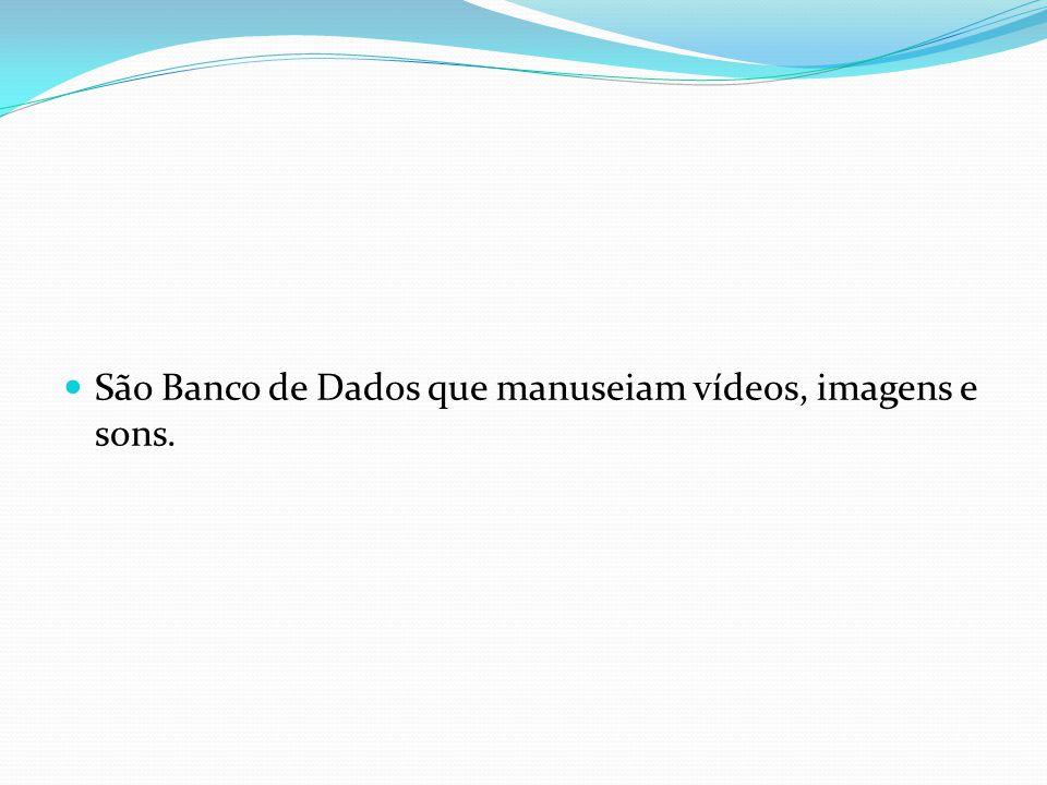 São Banco de Dados que manuseiam vídeos, imagens e sons.