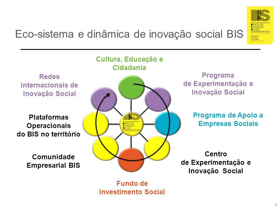Eco-sistema e dinâmica de inovação social BIS