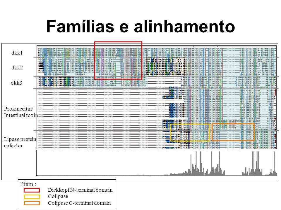 Famílias e alinhamento