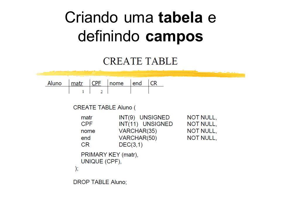 Criando uma tabela e definindo campos