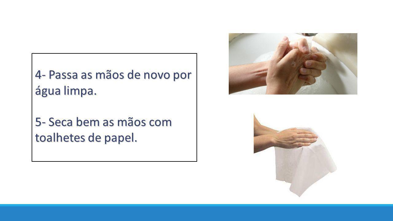 5- Seca bem as mãos com toalhetes de papel.