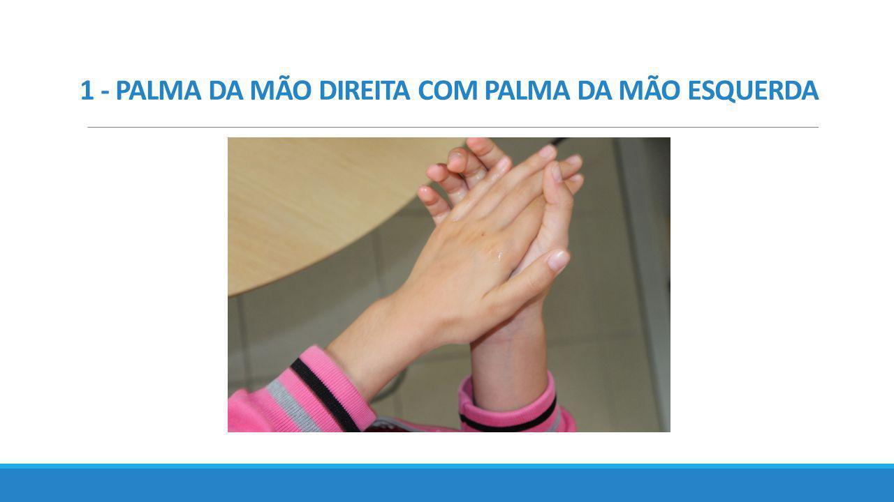 1 - PALMA DA MÃO DIREITA COM PALMA DA MÃO ESQUERDA