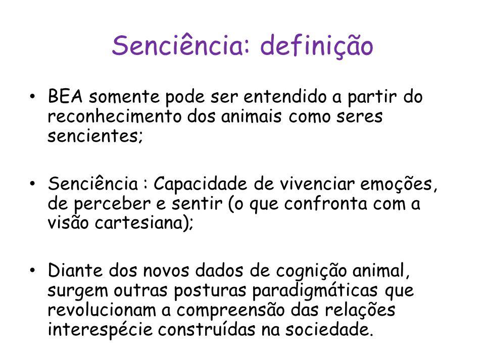 Senciência: definição