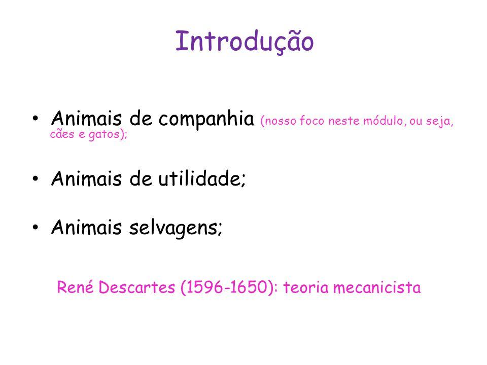 René Descartes (1596-1650): teoria mecanicista