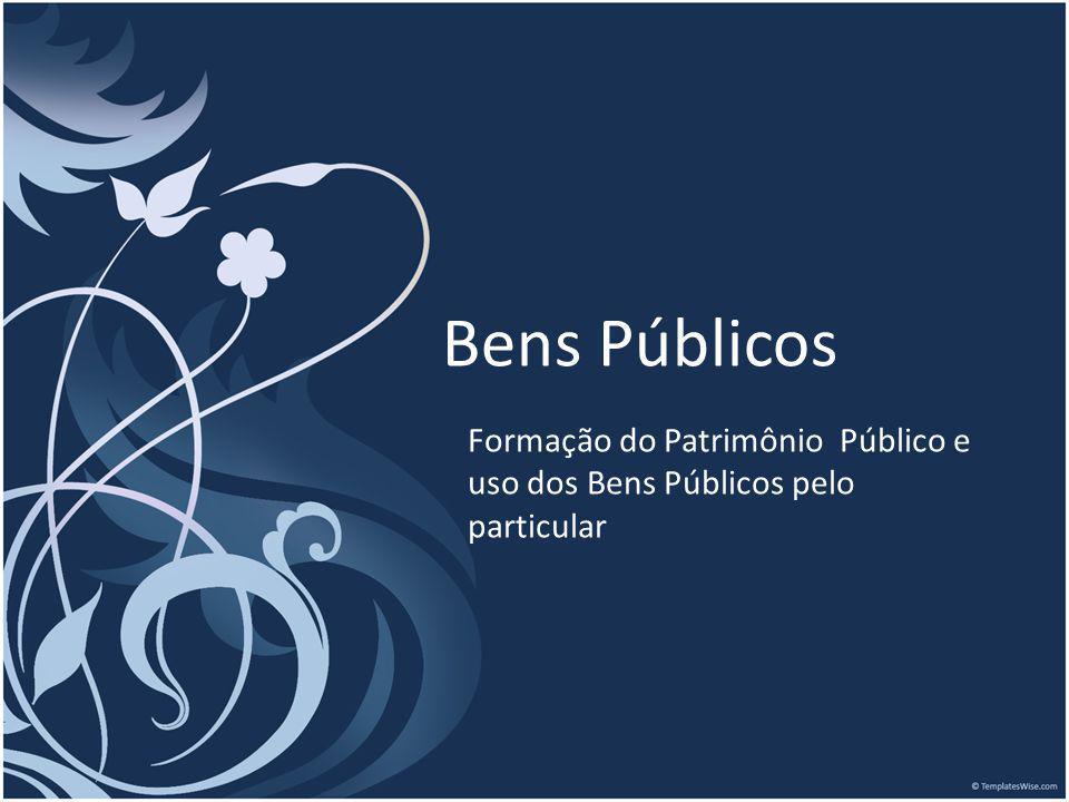 Formação do Patrimônio Público e uso dos Bens Públicos pelo particular