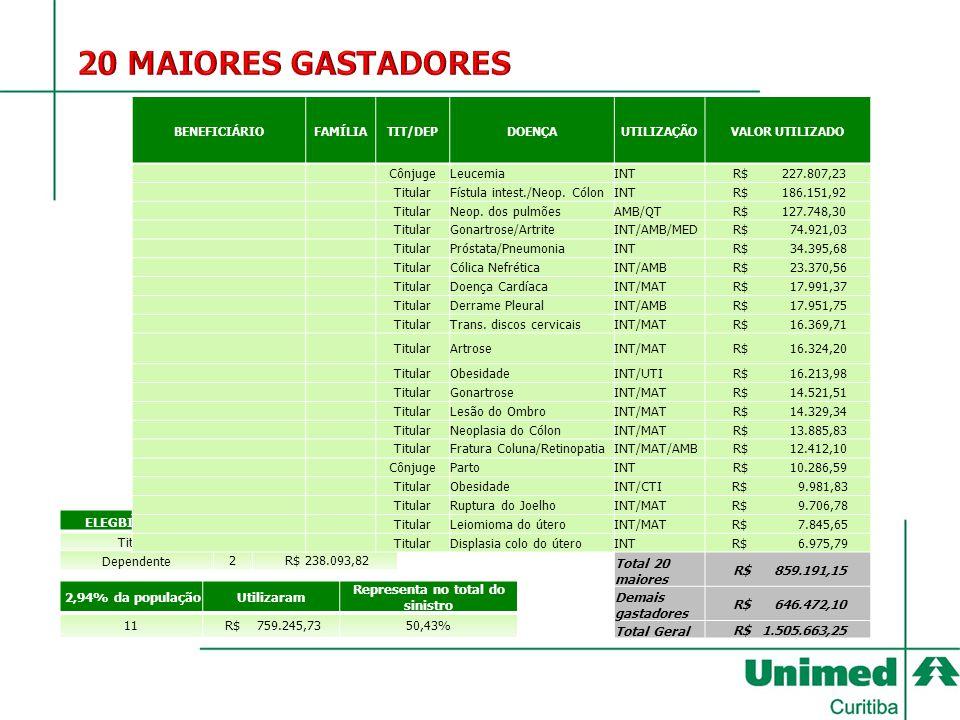 ELEGBILIDADE DOS 20 MAIS GASTADORES Representa no total do sinistro