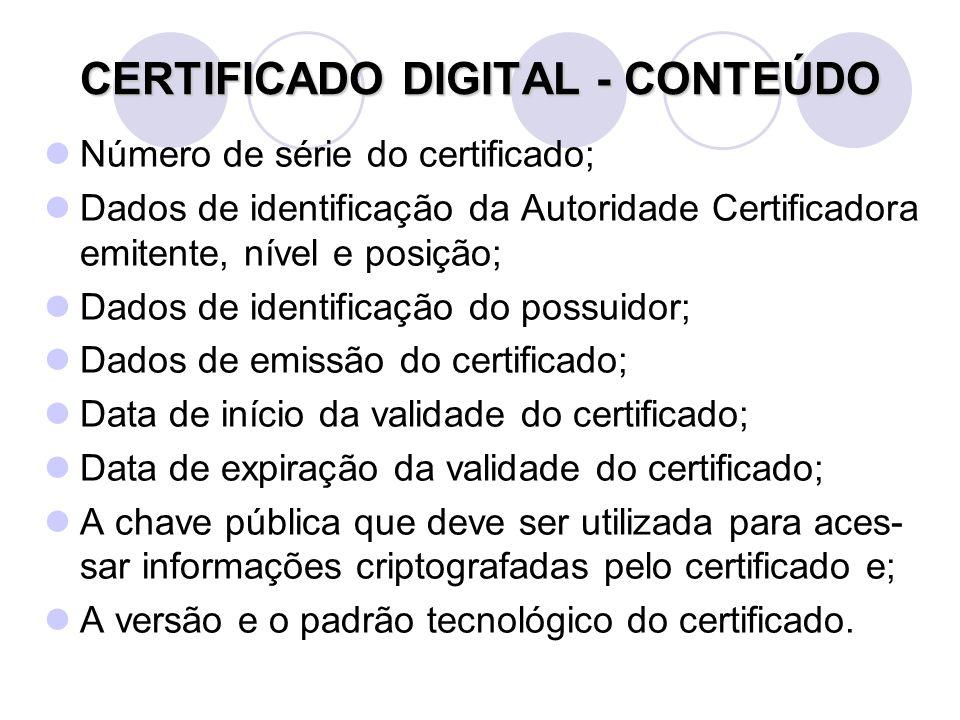 CERTIFICADO DIGITAL - CONTEÚDO