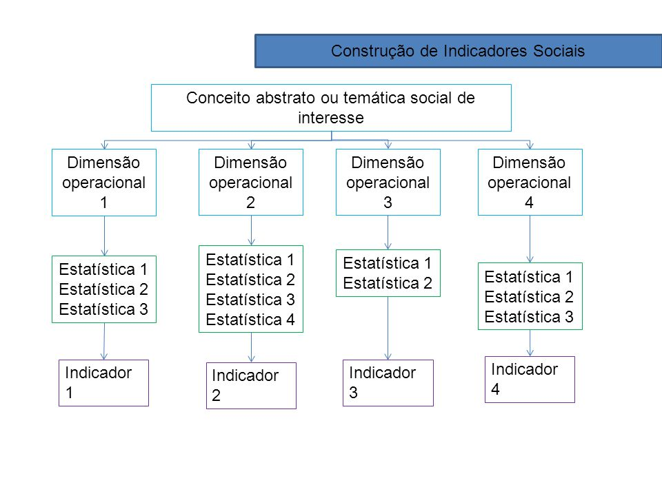 Construção de Indicadores Sociais