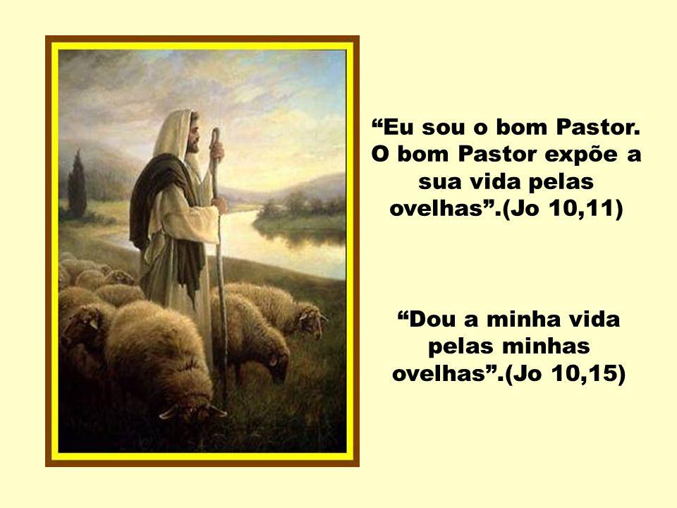 Dou a minha vida pelas minhas ovelhas .(Jo 10,15)