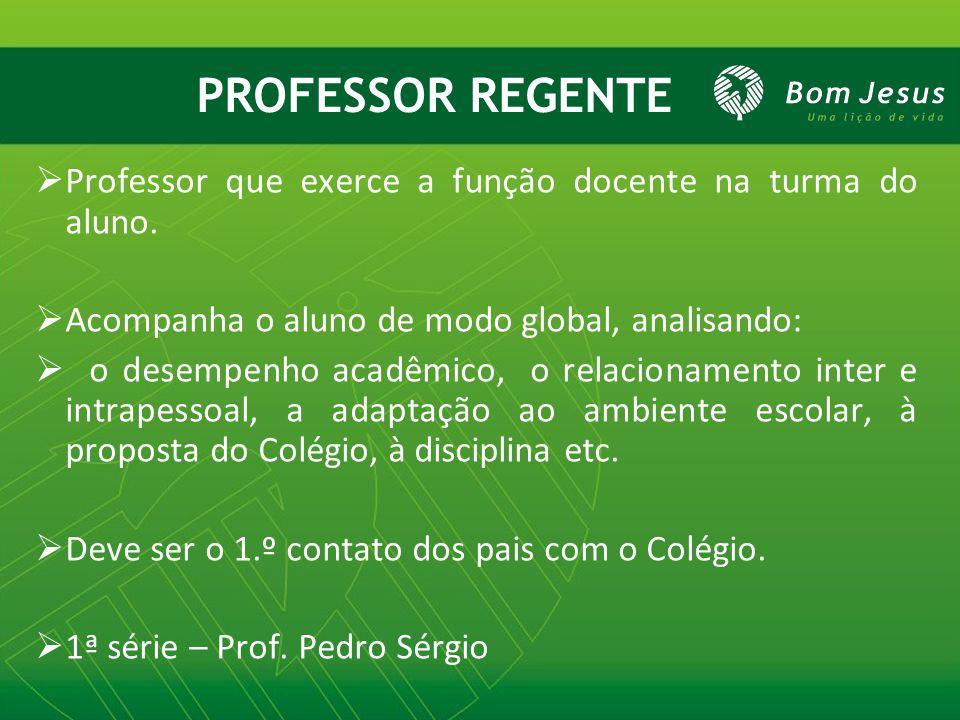 PROFESSOR REGENTE Professor que exerce a função docente na turma do aluno. Acompanha o aluno de modo global, analisando: