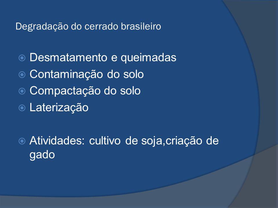 Degradação do cerrado brasileiro