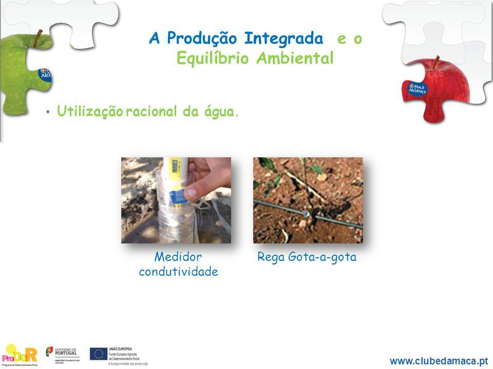 A Produção Integrada e o