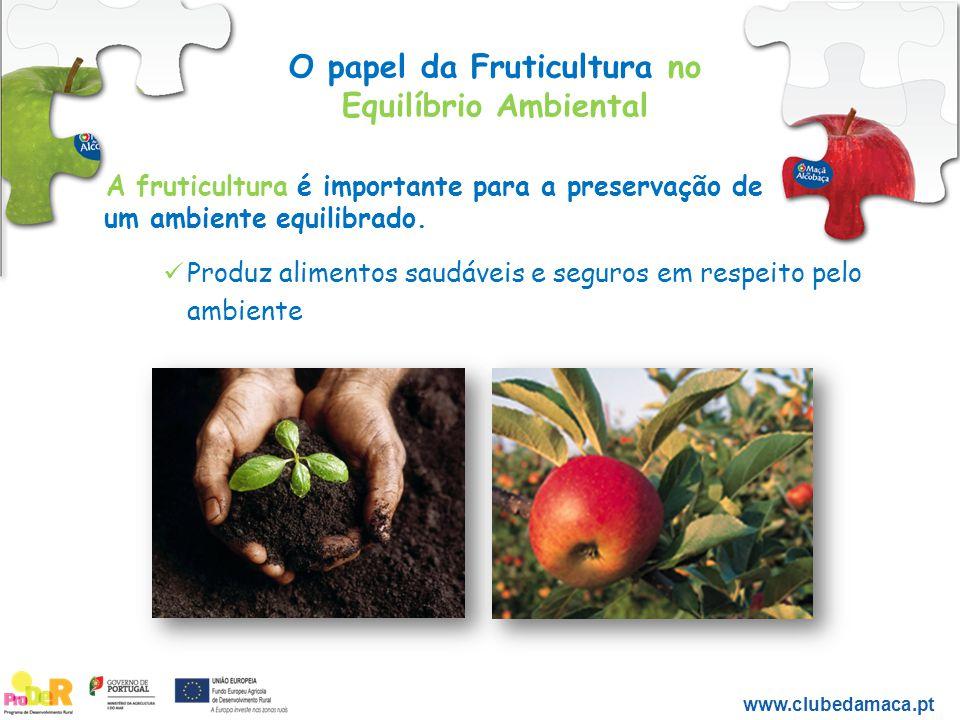 O papel da Fruticultura no