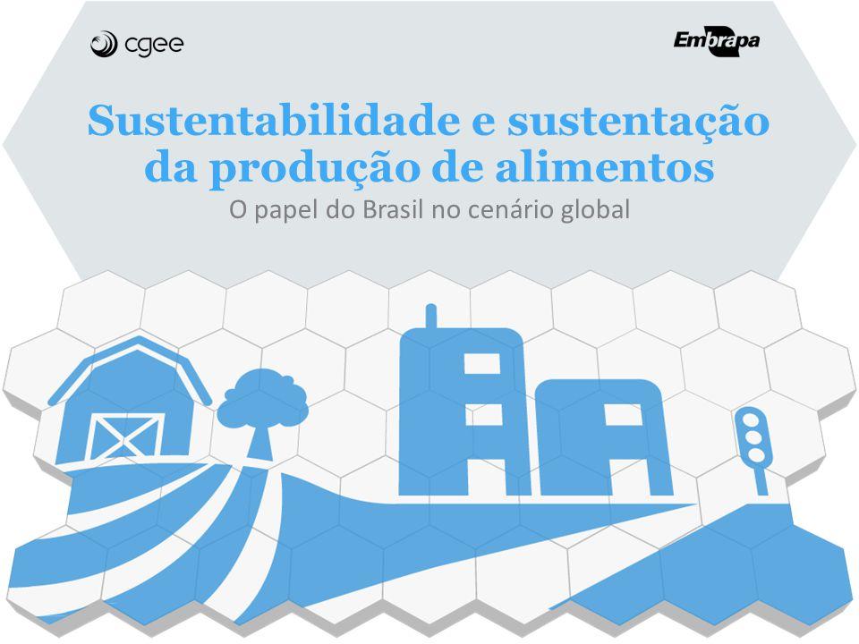 Sustentabilidade e sustentação da produção de alimentos