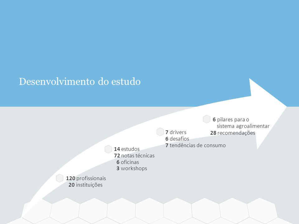 Desenvolvimento do estudo