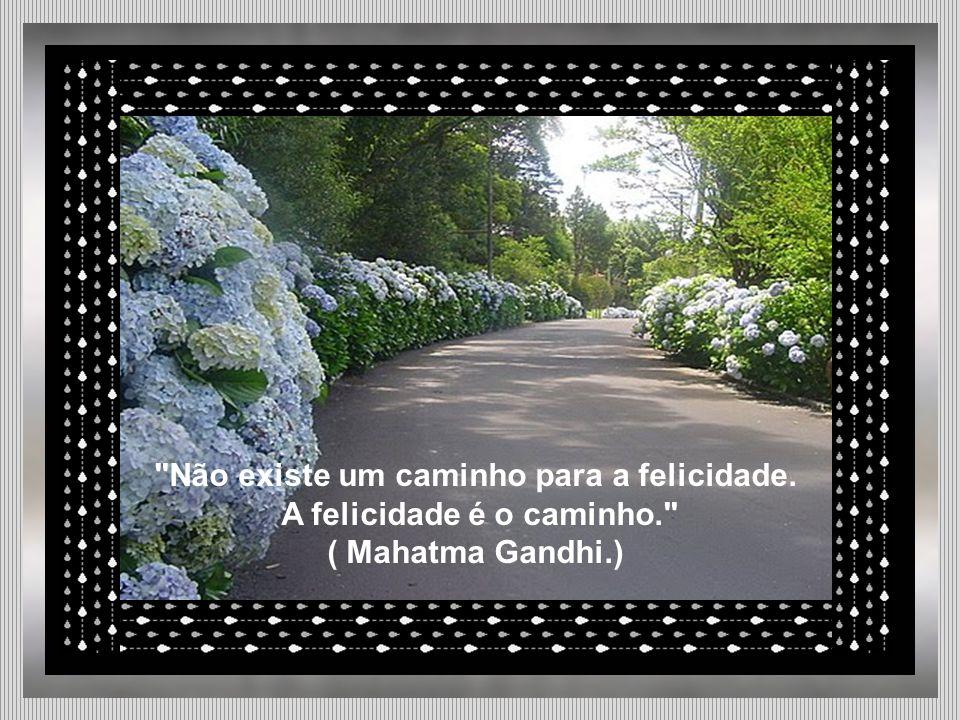 Não existe um caminho para a felicidade. A felicidade é o caminho.