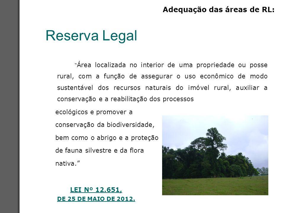 Reserva Legal Adequação das áreas de RL: ecológicos e promover a