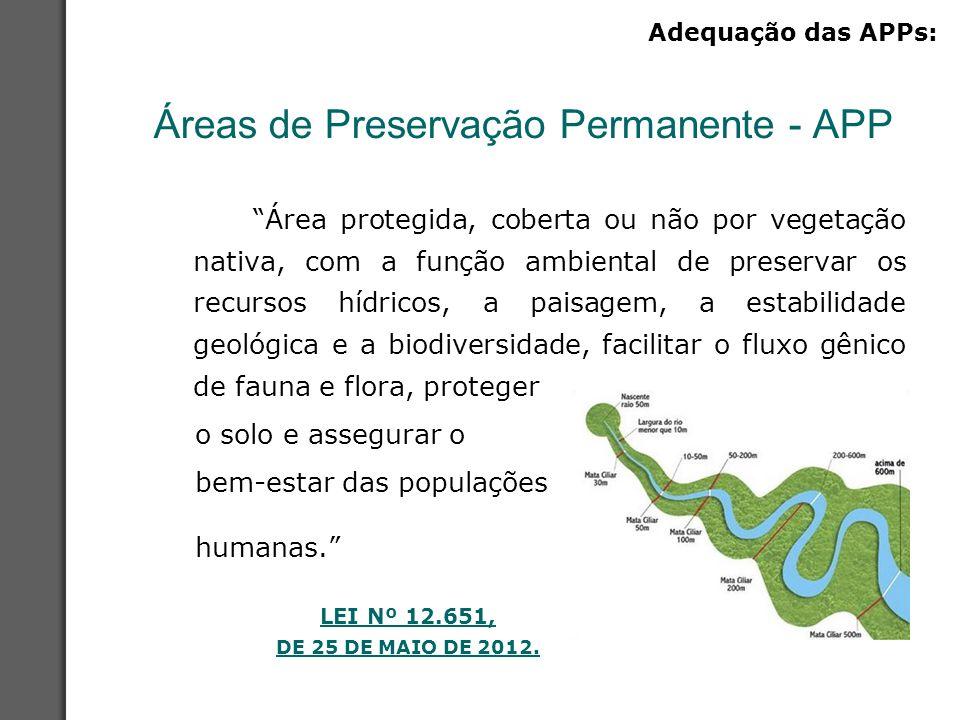 Áreas de Preservação Permanente - APP